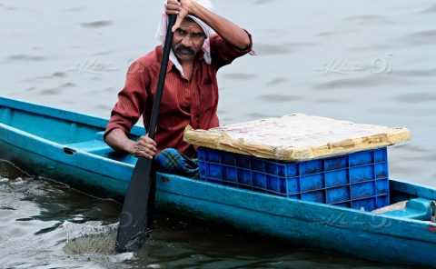 Fisherman rowing country boat in backwaters