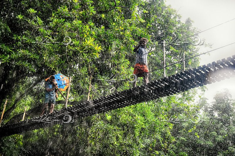 People on hanging bridge